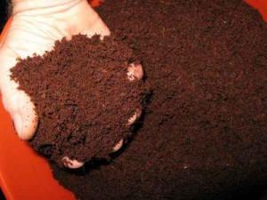 Индор методы для закрытого грунта