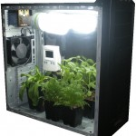 Выращивание марихуаны в стелс-гроубоксе