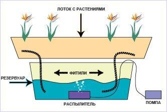 Гидропонные системы фитильного полива