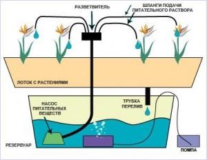 Основные типы гидропонных систем