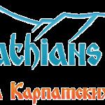 Новые сорта от Carpathians Seeds