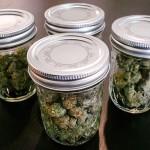 Способы хранения марихуаны