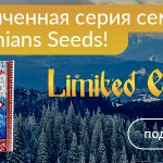 Carpathians Seeds: Limited Edition