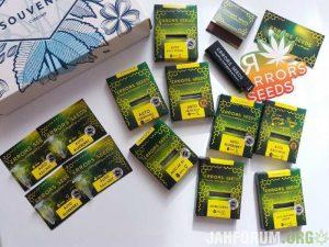 mj, errors seeds, seedbank, weed, cannabis,