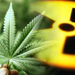 weed, radiation,