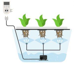 Аэропоника и выращивание каннабиса