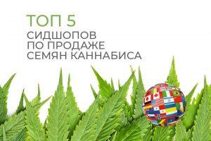 ТОП 5 мировых сидшопов по продаже семян каннабиса